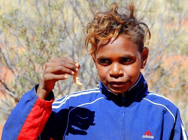 Австралийское блюдо аборигенов — витчетти